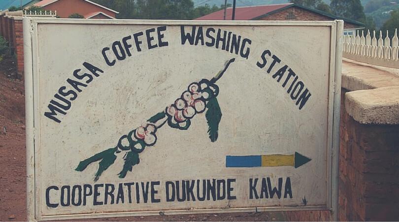 Musasa Coffee Washing Station
