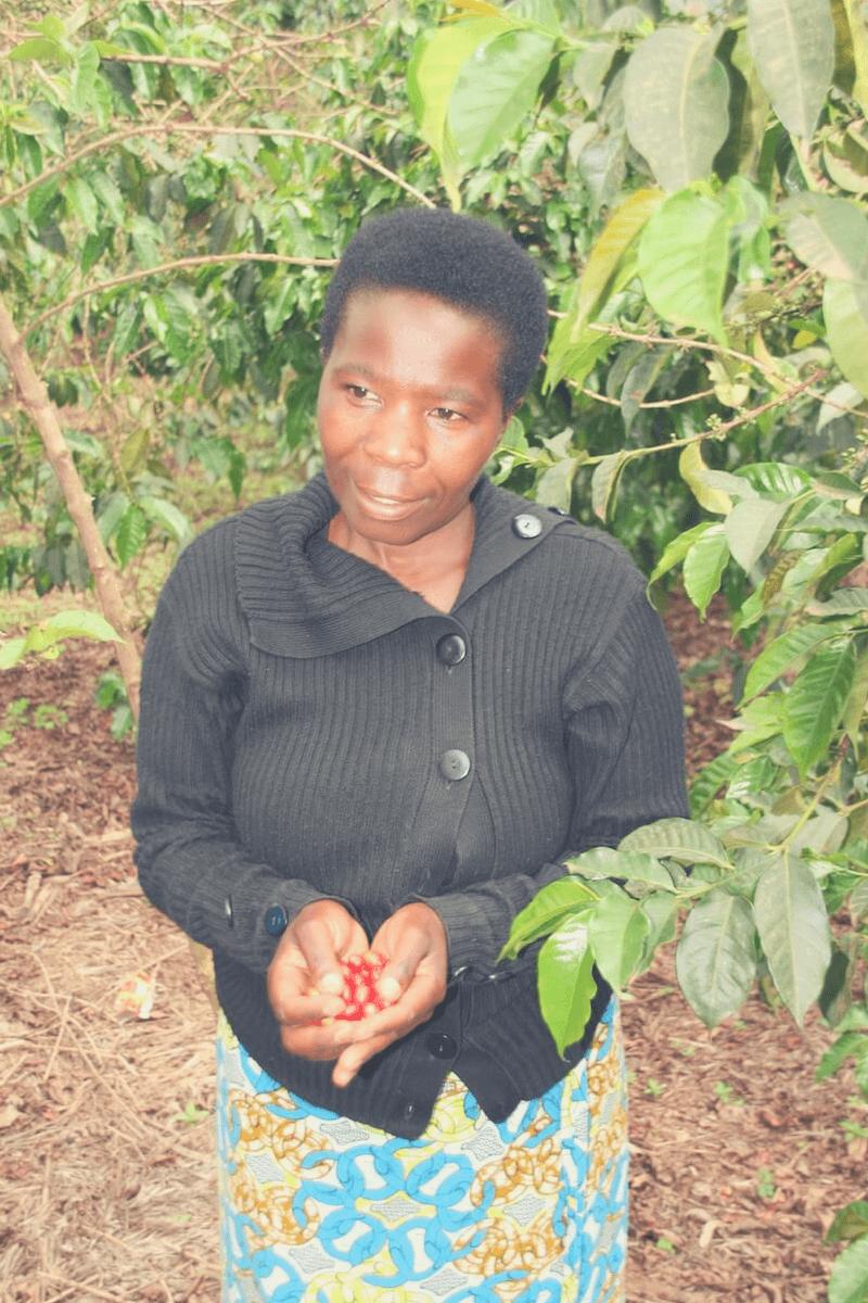 Kaffeebäuerin der Dukunde Kawa Kaffeekooperative
