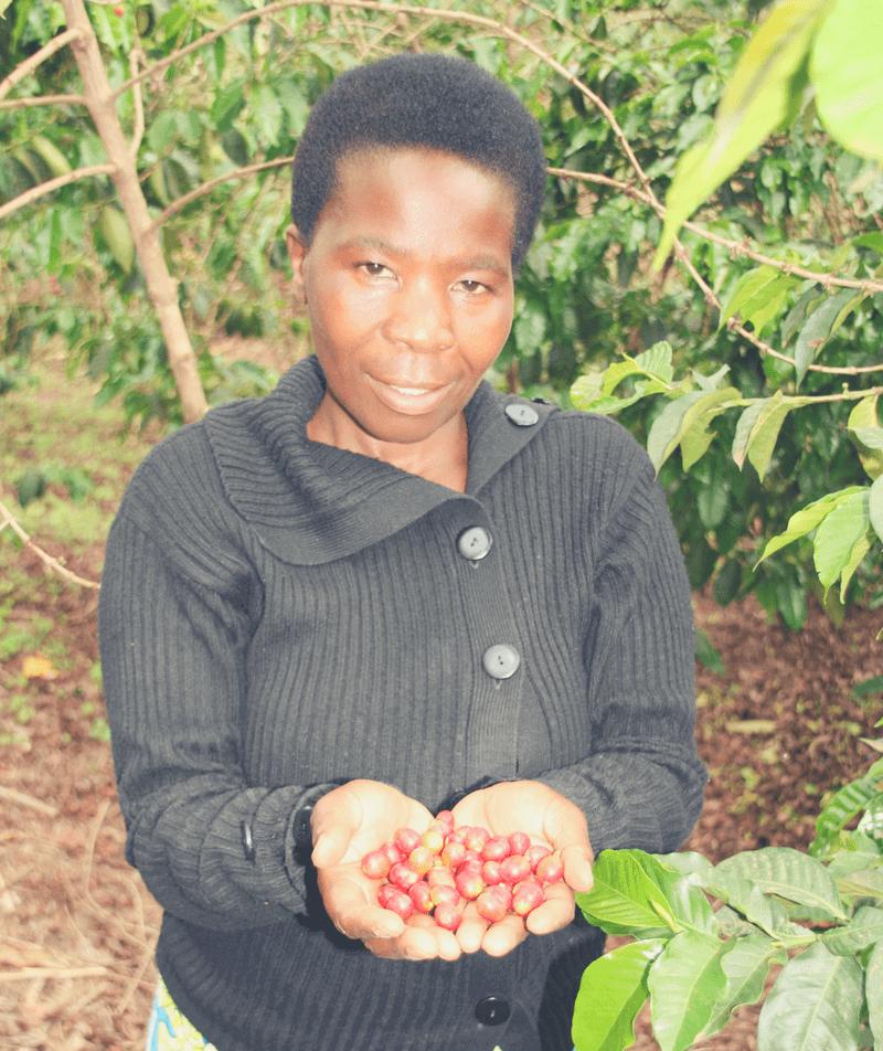 Besuch in der Kaffee-Kooperative: Celine Mukanterina