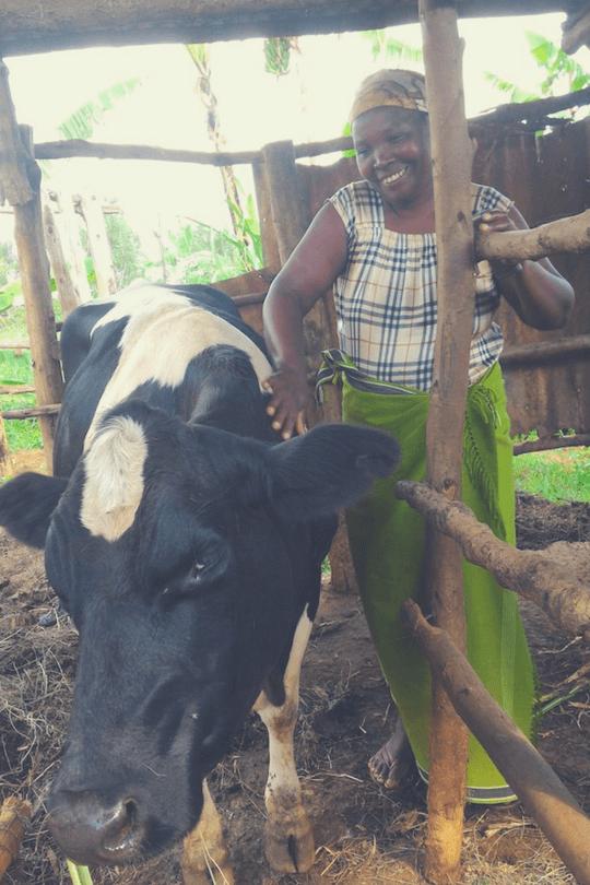 Odette mit ihrer Kuh