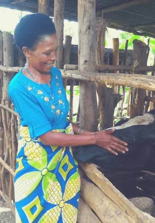 Auch Marie Bedabasingwa ist stolze Besitzerin einer Kuh, die ihr wertvollen Biodünger für den Kaffeeanbau liefert