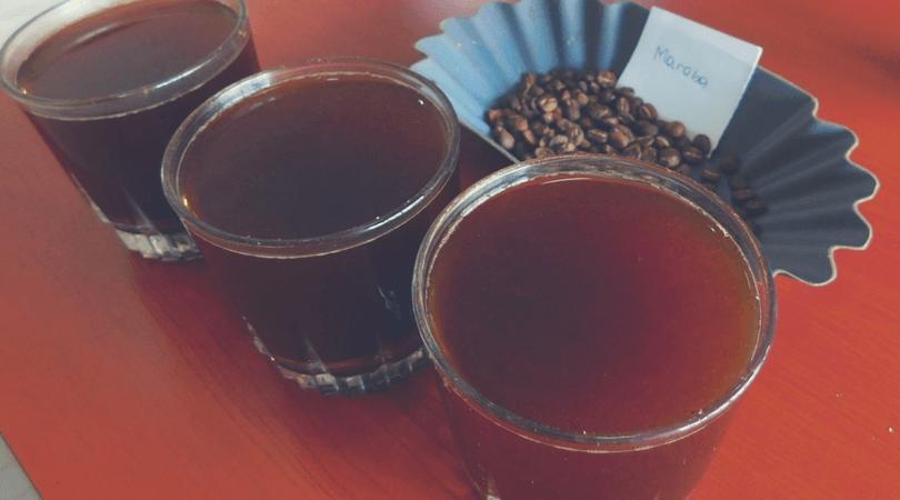 Café de Maraba Cupping
