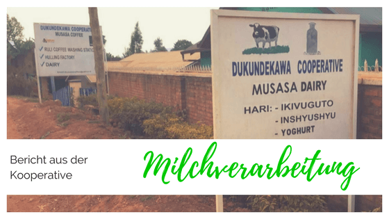 Milchverarbeitung in der Kooperative