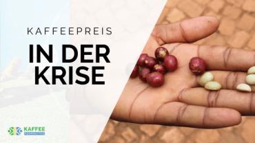 Sinkender Kaffeepreis: Wie lassen sich Nachhaltigkeit und Wirtschaftlichkeit im Kaffeesektor vereinbaren?