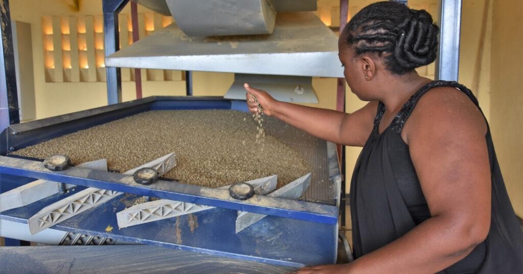 Kaffee Kooperative 14